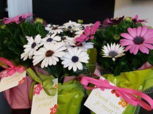 Ook op onze school werd het ondersteunend personeel in de bloemetjes gezet.
